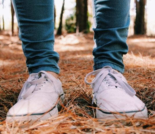white vans shoes in the forest