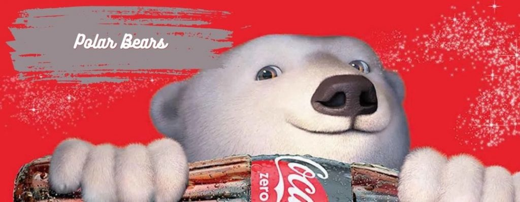 Polar Bears made famous for Christmas by Coca Cola